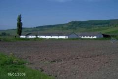 rumaenien_04_2008_7