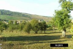 rumaenien_10_2011_13